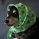 Babushka by Renee Blake