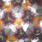 Kaleidescope 29 by DelitefulDee