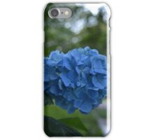 Norfolk Flowers iPhone Case/Skin