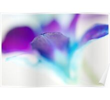 Watercolour orchid Poster