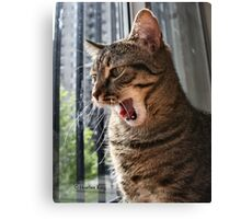 Yawn-in the middle Canvas Print