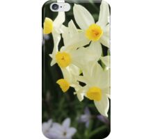 Jonquils in Spring iPhone Case/Skin