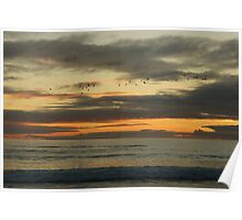 South Australian beach at Sunset Poster