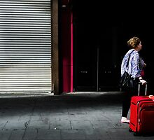 Red luggage  by athex