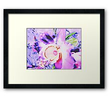 Orchid Art Collection  Framed Print