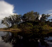 Moonlit Burgess by BradBaker