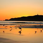 sunrise with seagulls by michelle mcclintock