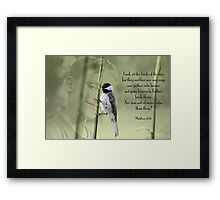 Are you not of much more value? Framed Print