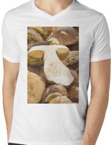 mushroom at market Mens V-Neck T-Shirt