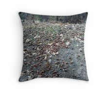 Acorns In The Forest Throw Pillow