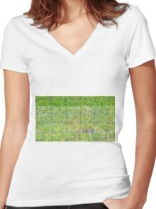 Fence and Grass Women's Fitted V-Neck T-Shirt