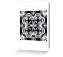 Translucent Greeting Card