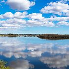 Aquinas Bay Fluffy Cloud Day by Paul Fulwood