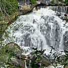 Inglis Falls by Heather Paakkonen