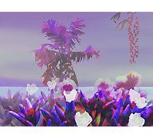 Sea Lavender Photographic Print