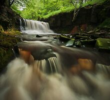 'Rocky Brook' Waterfall by Steve  Liptrot