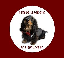 Home is where the hound is by longdogswa
