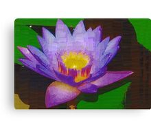 Water lily with molten center Canvas Print