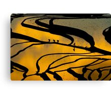 Yuanyang Terraced rice field  Canvas Print