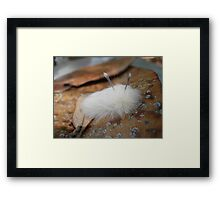 Are you looking at me?  ARE YOU LOOKING AT ME? Framed Print
