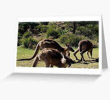 Lunch on the Beach Greeting Card