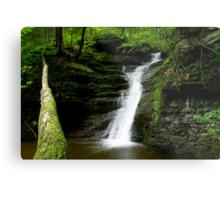 Buttermilk Waterfalls Metal Print
