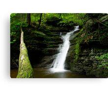Buttermilk Waterfalls Canvas Print
