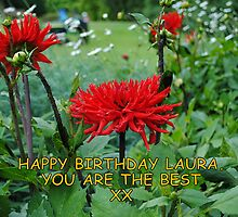 Happy Belated Birthday Laura by Dorothy Thomson