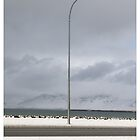 By the Harbour, Reykjavik (Iceland) by Madeleine Marx-Bentley
