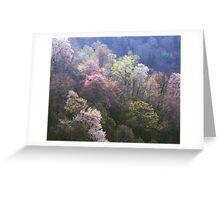 TREES,SPRING Greeting Card
