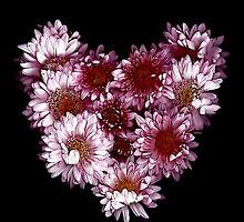 """Crysanthemums With Love"" by Michelle Lee Willsmore"