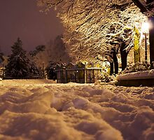 Soft Wet Childhood Snow by ciaca