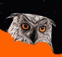 Owly Night by ciaca