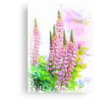 Lupin Digital Painting Canvas Print