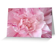 Pretty In Pink, Fourth In Series Greeting Card