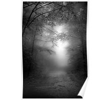 A Path through the Woods Poster