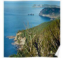 TASMAN PENINSULA ~ O'Hara Bluff by tasmanianartist Poster