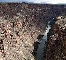 The Rio Grande River by Nancy Richard