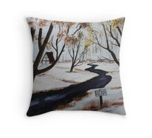 120 Acres for Sale Throw Pillow