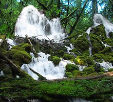 Clearwater falls Union creek area by goddessteri211