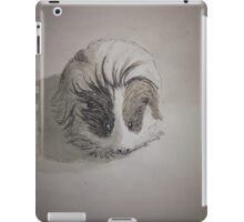 Cute Guinea Pig Ink Painting iPad Case/Skin