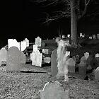 Ghost Walking by Sam Davis