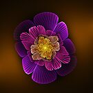 Wavy Apo Flower by Pam Blackstone