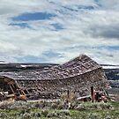 The Darn Barn Fell Down by Kay Kempton Raade
