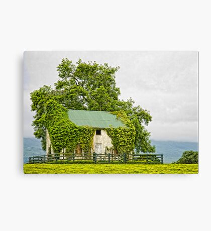 Irish Barn Canvas Print