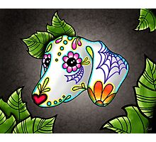 Day of the Dead Dachshund Sugar Skull Dog Photographic Print