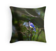 Blue Jay... Throw Pillow