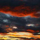 light. eastcoast, tasmania by tim buckley | bodhiimages