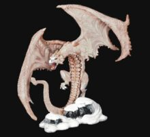 Snow Dragon T-Shirt by Walter Colvin