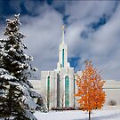 Mt. Timpanogos Temple After the Storm 20x24 by Ken Fortie